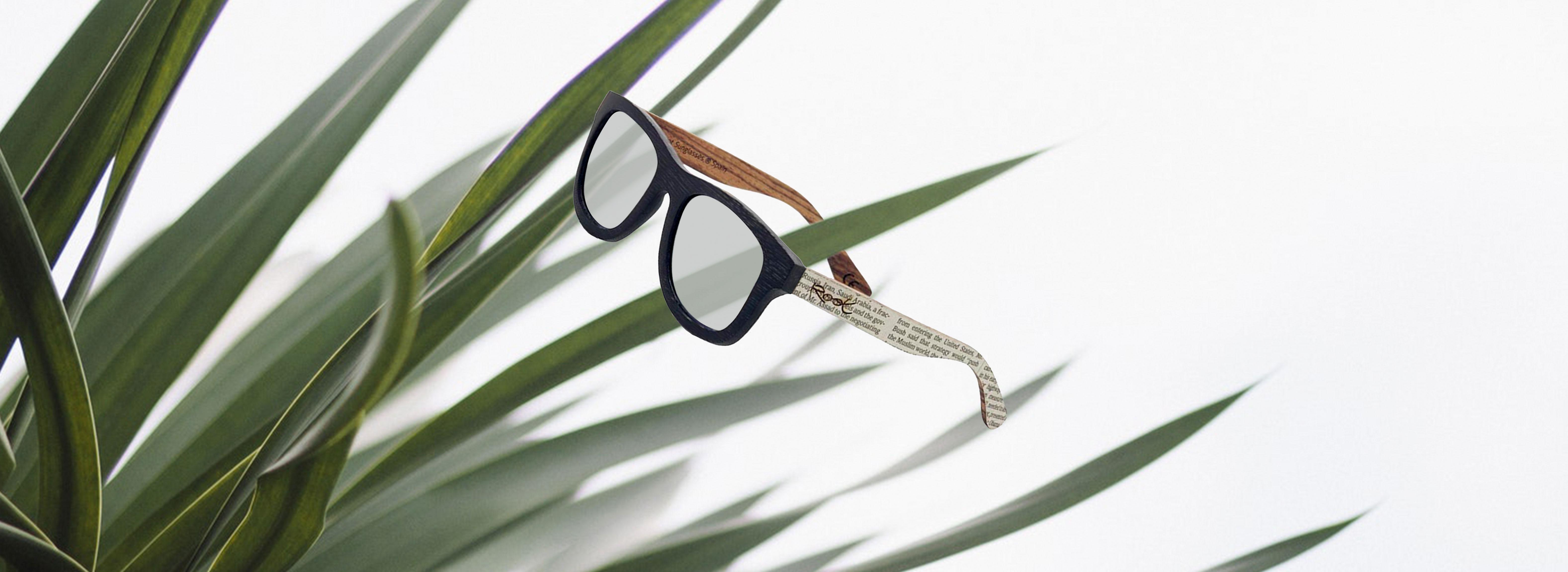 montaje-gafas